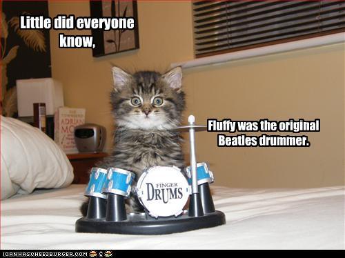 funny-pictures-kitten-has-drum-set